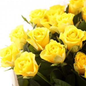 黄色いバラ3